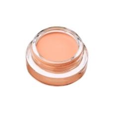 L´OREAL INFAILLIBLE 24H CONCEALER POMADE