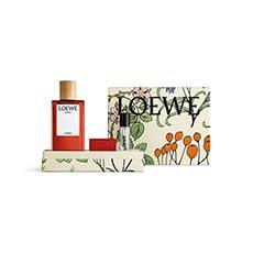 Loewe Solo Cedro Cofre 3 piezas